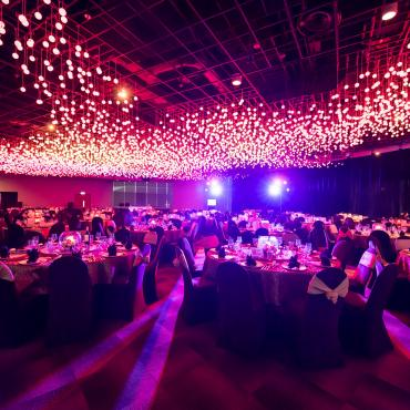 Platinum Gala In the Lion City (Hosted by WLS contributors)